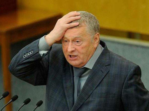 Жириновский раскрыл причину двухнедельного исчезновения Медведева