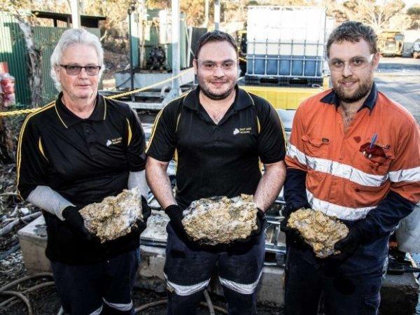 В Австралии шахтеры, добывавшие никель, случайно раскопали 255 кг золота