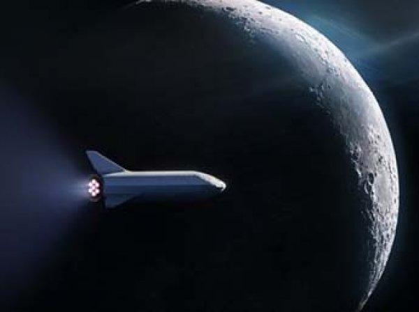 Стало известно, кого SpaceX отправит первым в космическое турне к Луне