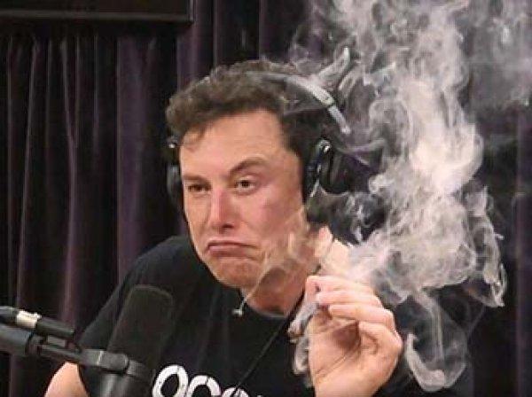 Маск выкурил марихуану и выпил виски в прямом эфире
