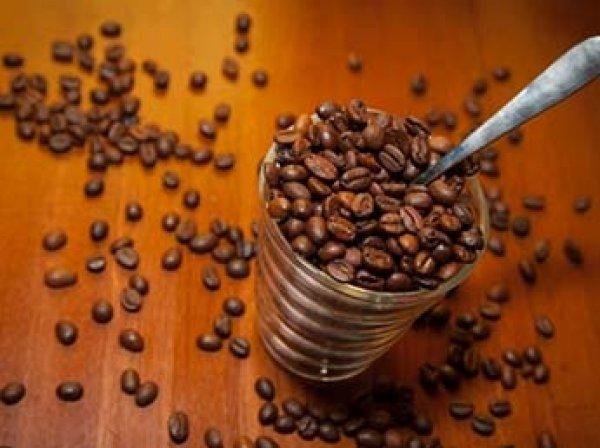 Ученые обнаружили неожиданную пользу какао и шоколада