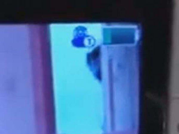"""""""Это правда жутко"""": в США радионяня сняла на видео призрак рядом с младенцем"""