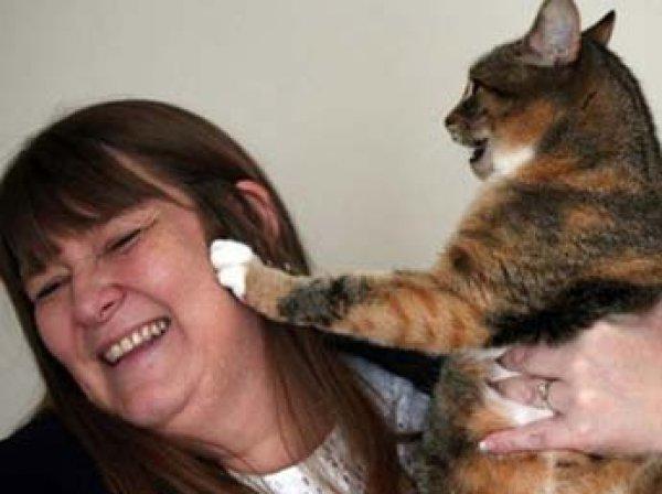 В Британии кошка дважды спасла свою хозяйку от рака