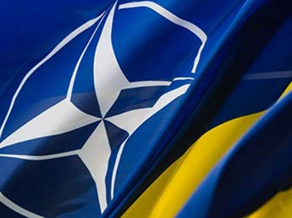 МИД раскрыл план обороны России в случае вступления Украины и Грузии в НАТО