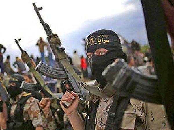 Блогеры узнали о размере зарплат российских наемников ИГИЛ