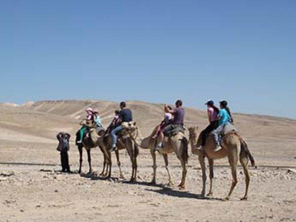 Россиянам обещают туры в Египет по 25 тысяч рублей на семью