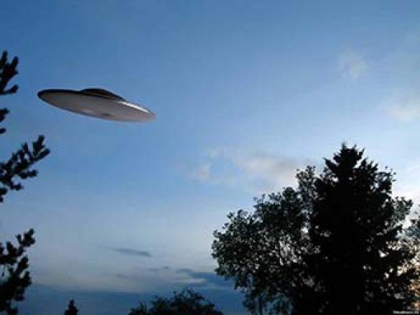 Очевидцы сняли пролет НЛО в небе над Петербургом