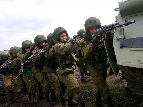 Профессор МГУ рассказал, за сколько дней Россия разгромит Украину в случае войны