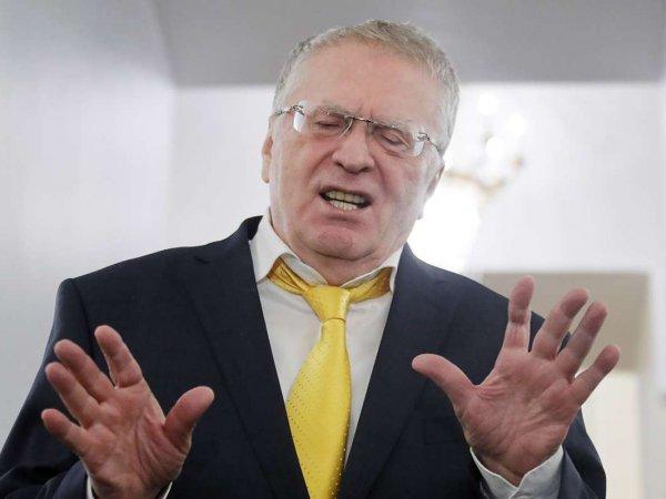 """""""Впереди война"""": Жириновский подтвердил пророчество израильского раввина о Третьей мировой"""