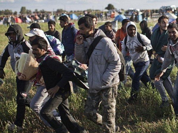 Тысячи вооруженных ножами мигрантов рвутся в Европу