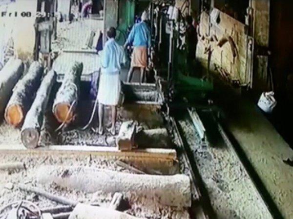 В Индии мужчина из-за быка отпилил себе руку, но смог вернуть ее на место