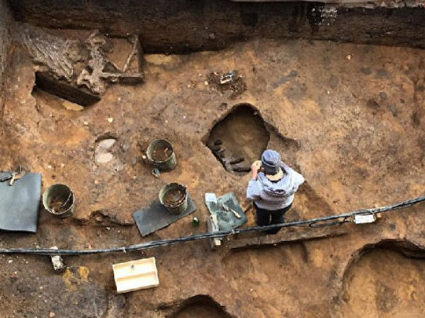 Археологи нашли в Подмосковье череп мамонта с древним кладом