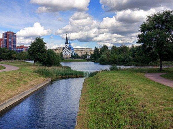 Депутатов-единороссов, голосовавших за пенсионную реформу, «похоронили» в Пулковском парке (ФОТО)