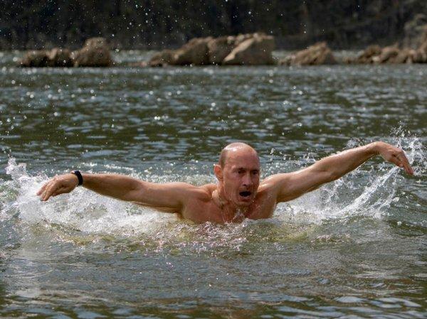 """""""Держит """"мамонта"""" в гараже и никогда не напивался"""": СМИ Китая рассказали, какой Путин в реальной жизни"""