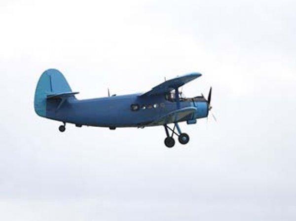 В Сети появились фото жесткой посадки обледеневшего Ан-2 под Архангельском