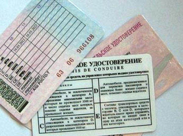 В России могут ввести проверку знаний ПДД водителями при каждой замене прав
