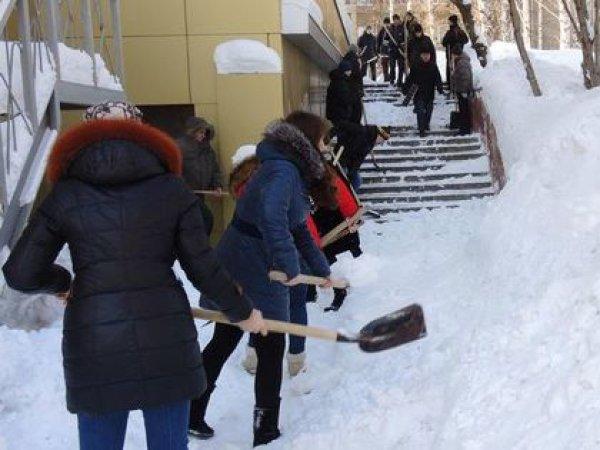 В Саратове учителей на морозе заставили убирать снег в мешки