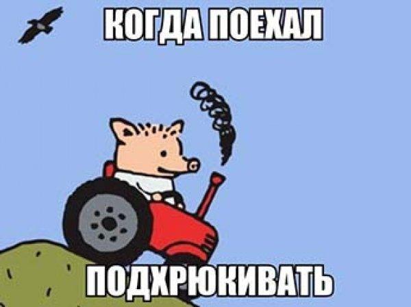 После слов Путина Симоньян запустила в Интернете «подхрюкивание» - челлендж