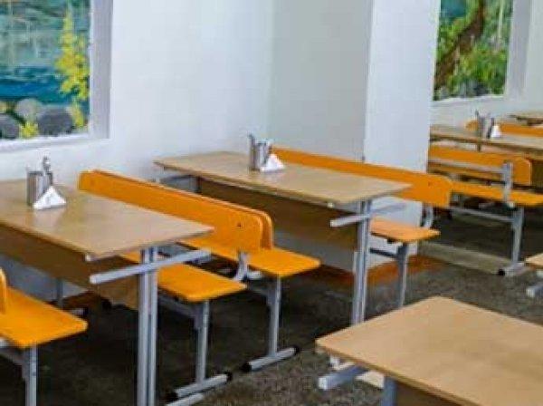 В московской школе произошла массовая драка третьеклассниц