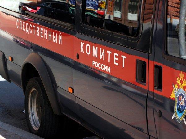 В Кемерово отец держал 11-летнего сына на цепи, прикованной к гире