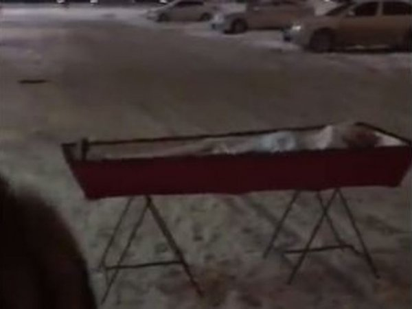 """""""Что мне еще оставалось делать?"""": оставившая гроб у правительства Самары вдова рассказала о случившемся"""