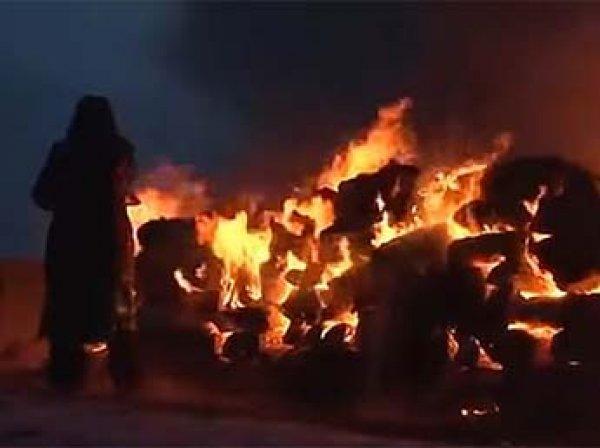 Байкальские шаманы сожгли пять верблюдов ради укрепления России