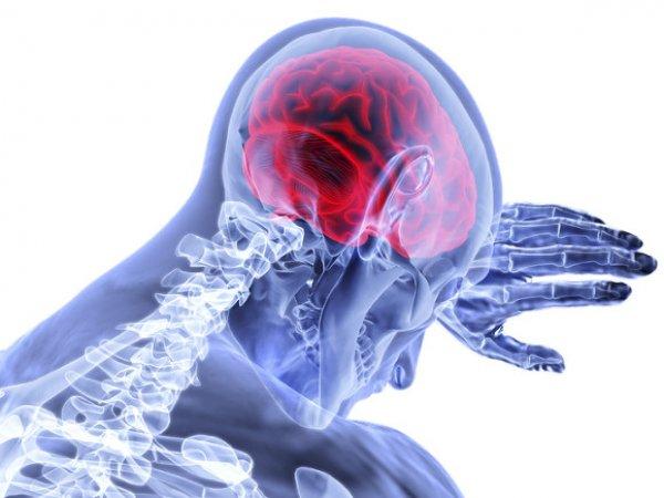 Ученые выяснили, чем женский мозг лучше мужского
