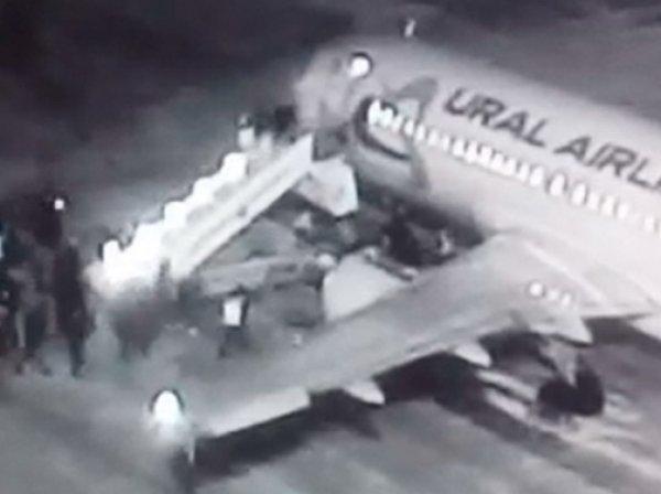 Падение людей с трапа самолета в аэропорту Барнаула попало на видео: 6 пострадавших