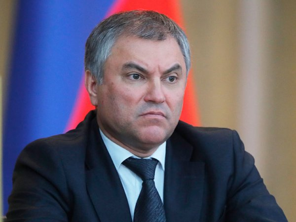Володин жестко прервал министра Орешкина во время выступления в Госдуме и перенес заседание (ВИДЕО)