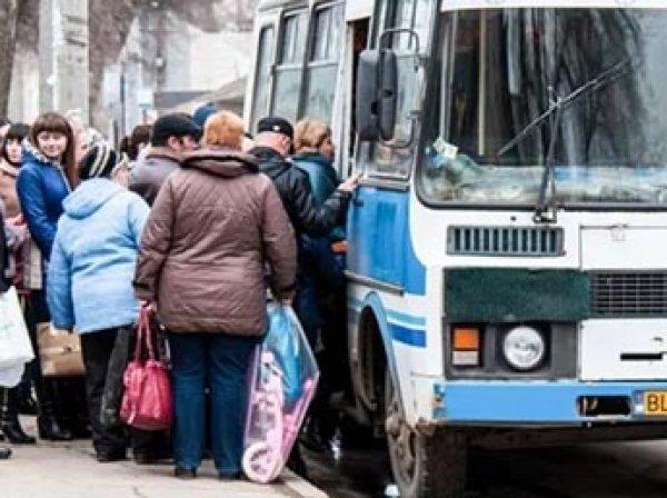 ГИБДД предложила снабдить подушками безопасности все ПАЗики в России