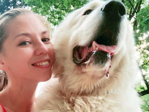 Дочь Ирины Салтыковой потрясла фото до и после того, как ее покусала собака за лицо