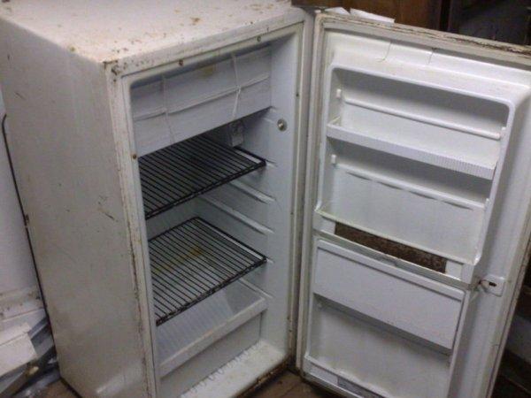 В Саратовской области в старом холодильнике нашли тело пропавшего 8-летнего мальчика