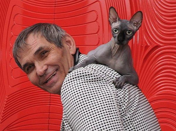 Стала известна судьба сбежавшего кота Алибасова,  заработавшего  тыс за два дня