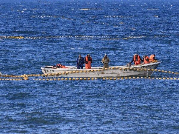 У берегов Сахалина рыбаки выловили тело бывшего мэра Шахтерска