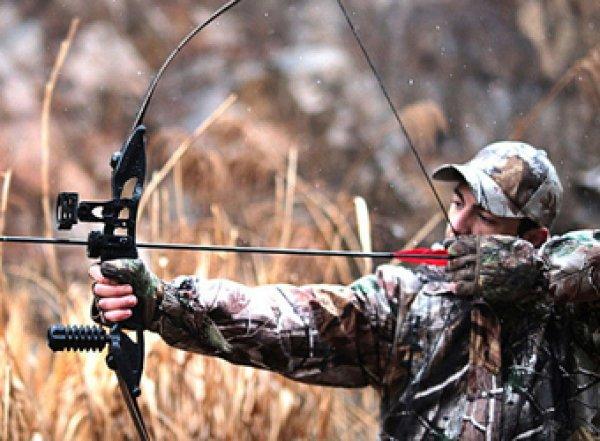 Россиянам разрешили охотиться с луком и стрелами