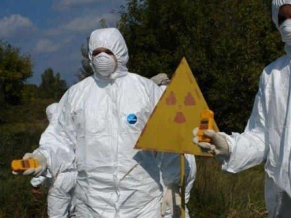 """Цезий-137 в организме врача, лечившего раненых в Северодвинске, объяснили """"крабами из Фукусимы"""""""