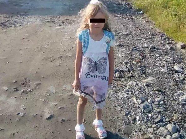 В лесу в Нижегородской области нашли живой пропавшую 5-летнюю девочку: она блуждала трое суток
