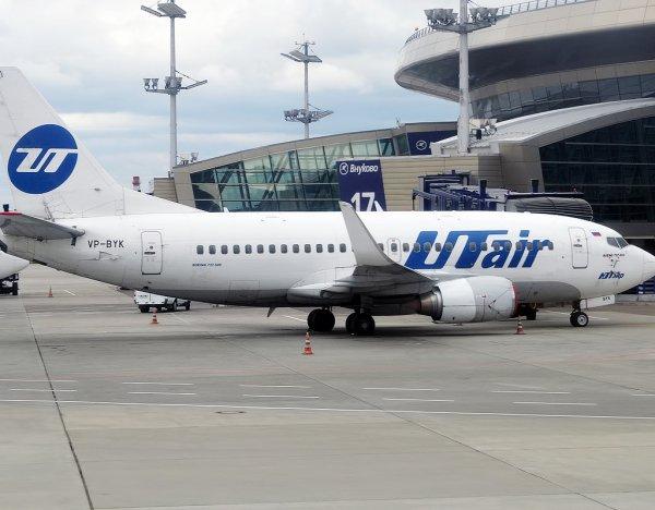 Самолет UTair вернулся во Внуково из-за попадания птицы в двигатель: это уже второе ЧП за день