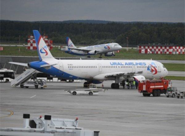 Самолет из Екатеринбурга совершил экстренную посадку после столкновения со стаей птиц