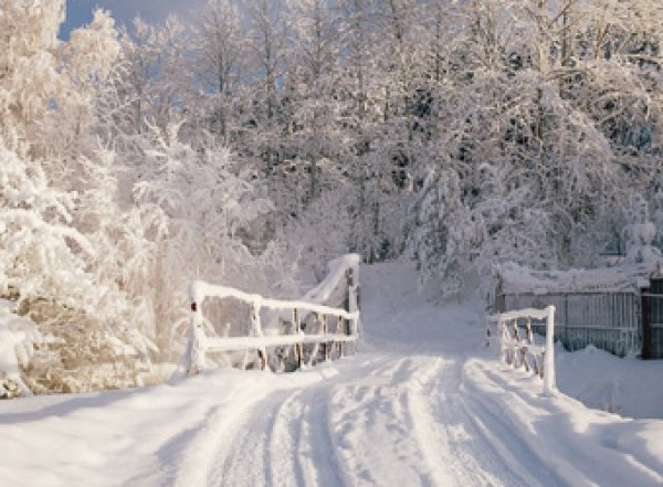 Метеорологи рассказали какой будет грядущая зима