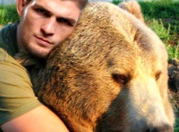 "«Бьют, сажают нацепь»: Хабиб Нурмагомедов возмутил британцев ""спаррингом"" с медведем (ВИДЕО)"