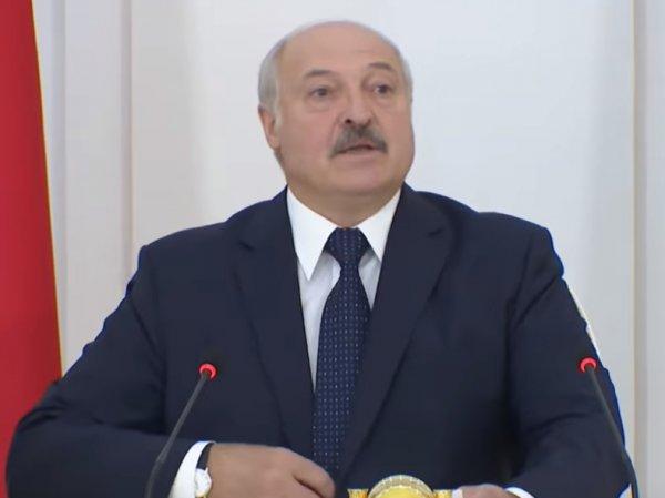 """""""Голову бы отвернул щенку"""": Лукашенко устроил """"публичную порку"""" чиновникам"""