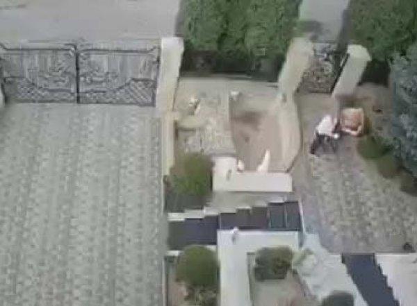 """""""Моменто море"""": покушение на ректора Тернопольского университета попало на видео"""