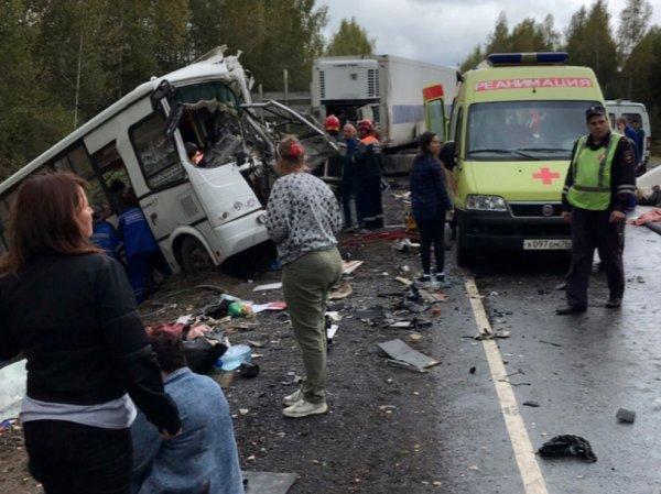 Авария с автобусом под Ярославлем сегодня, 14 сентября: 8 человек погибли (ВИДЕО)