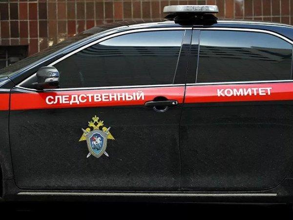 В Хакасии женщина за деньги сдавала в сексуальное рабство своих дочерей 7 и 8 лет