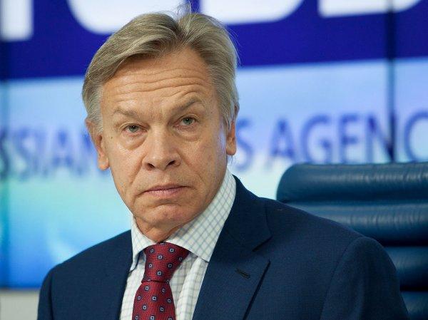 Пушков ответил Поклонской, поддержавшей затравленную в Сети Ротару