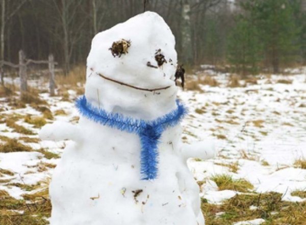 Гидрометцентр: Россию ждет аномально теплый январь