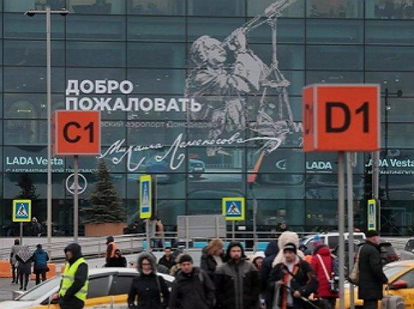 Названа причина задержания более 40 израильтян в Домодедово