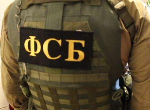 ФСБ задержала двух подозреваемых в подготовке терактов в Петербурге на Новый год