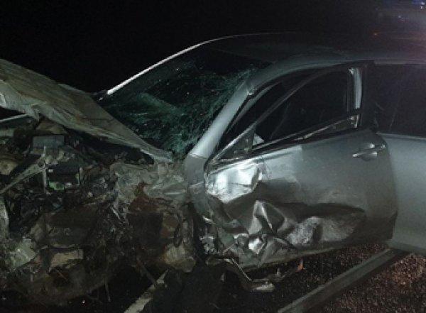 В Ленобласти полиция разыскивает виновника ДТП с двумя погибшими